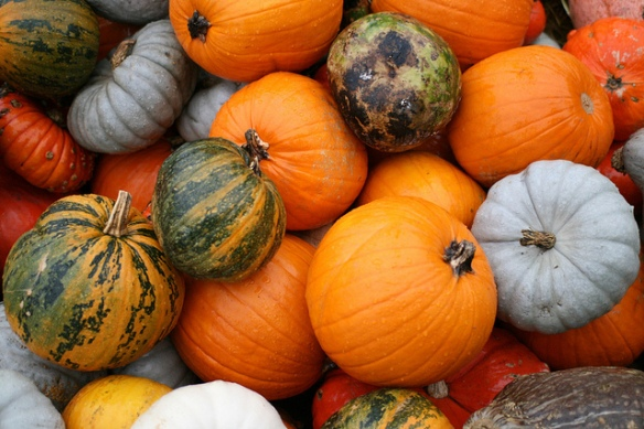 Do I feel sorry to have lost the colorfulness of the pumpkin in this? Not really, no :). Picture credit somebox@Flickr