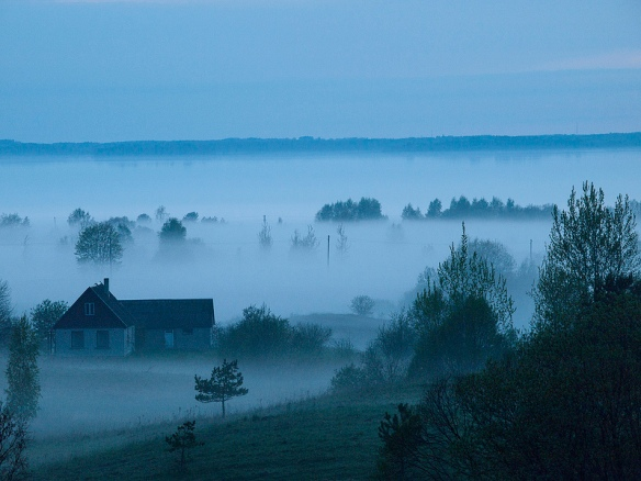 Fog in the countryside. Photo credits: zigurdszakis